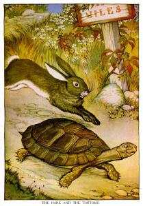 Hare-and-Tortoise-BlogPost-02