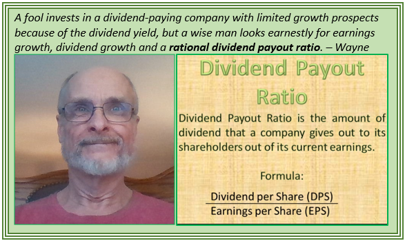 Dividend Payout Ratio Matters